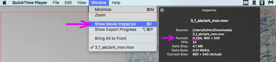 Quicktime Player Show Movie Inspector.jpg