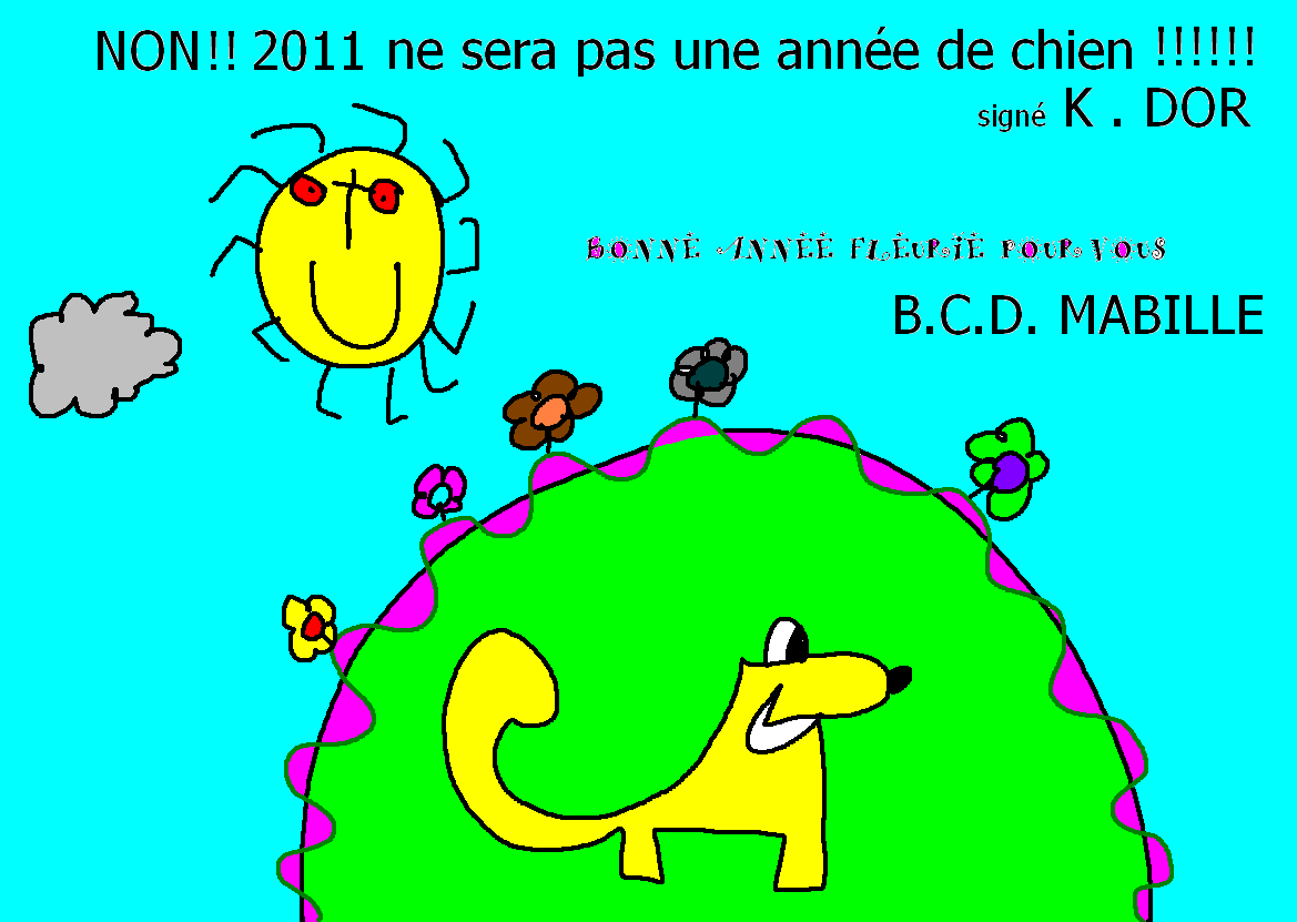 voeux 2011 f.png